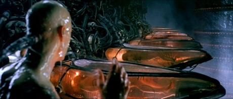 matrix incubators