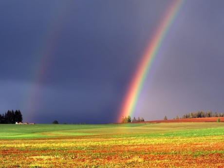 rainbow-over-farm-land