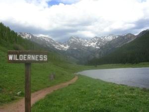 wilderness1_300px